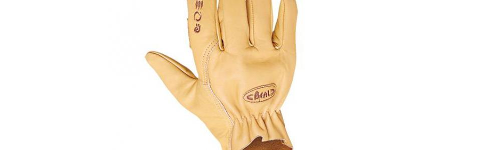 Beal Assure Gloves, Back