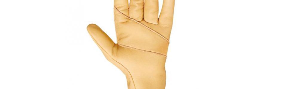 Beal Assure Gloves, Palm