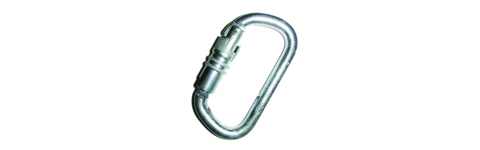 Groupe Foin Steel 'D' Twistlock Karabiner