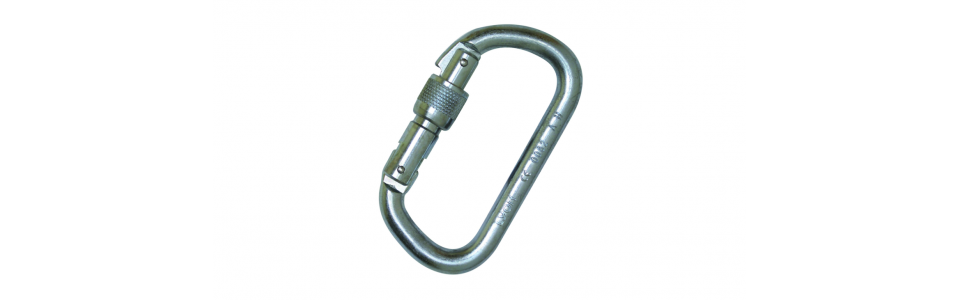 Groupe Foin Steel 'D' Screwgate Karabiner